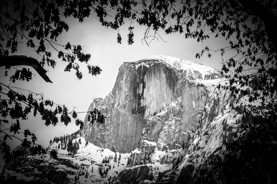 Yosemite Winter in Black and White