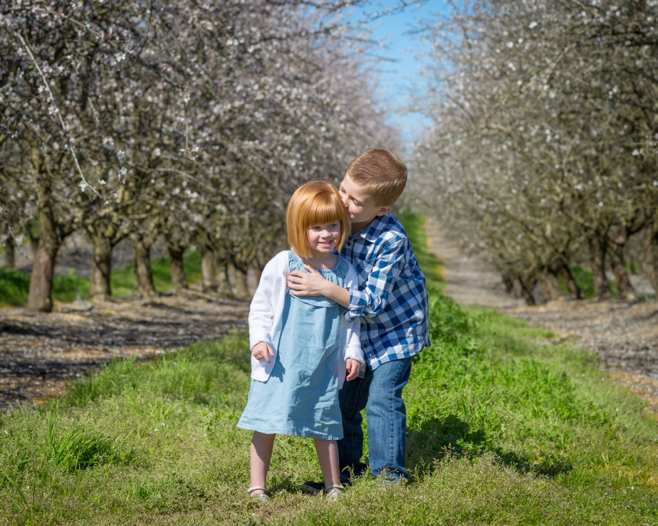 Mitchell Family Almond Blossom Session